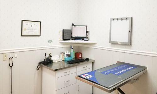 An exam room at Bonita Veterinary Hospital.