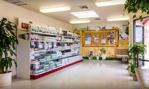 Lobby area for Bonita Veterinary Hospital.